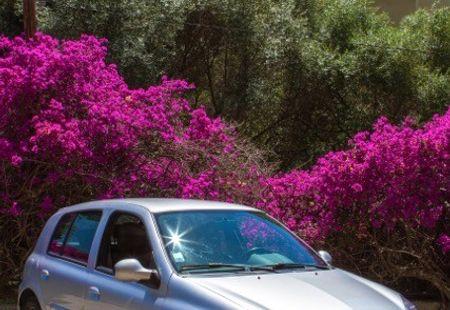 RENAULT CLIO RS 1/3